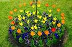 Orderly Garden Edging Ideas for Any Smart Enjoyment | Great Home ...