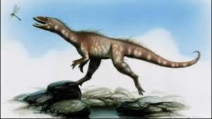 New      Dragon Thief      dinosaur species offers evolutionary clues     GMA Network Paleontologists say a     million year old dinosaur fossil found two years ago on a Welsh beach could offer vital clues to understanding the evolution from