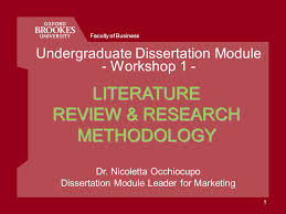 A Brief Guide to Critical Literature Review Cathy Hollister  RDH     Library  Teaching and Learning   Te Wharep  r  kau   Lincoln University     References     A Literature Review