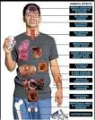 How Alcohol Affects The Body and Mind