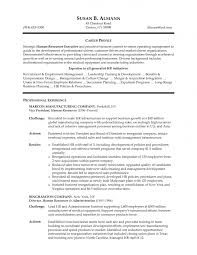 resume achievements examples sample resume of hr manager sample hr manager resume hr executive resume examples resume hr manager human resources manager resume
