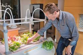 indoor garden inhabitat green design innovation architecture