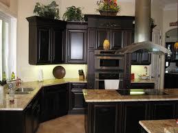kitchen designs black cabinets with dark trim small open kitchen