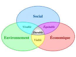 6- Le dévelopement durable