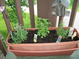 patio herb garden patio herb garden tiered planters