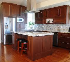 Kitchen Cabinets Mahogany Contemporary Kitchen Cabinetry Pictures Steve U0027s Cabinetry Blog