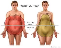 Weight Control   In Depth Report   NY Times Health Weight gain in the area around the waist  apple type  is more dangerous than weight gained around the hips and flank area  pear type   Fat cells in the