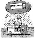 about Monsanto's patent