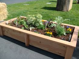 How To Keep Deer Out Of Vegetable Garden by Best 25 Raised Bed Plans Ideas On Pinterest Raised Garden Bed