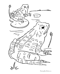 tadpole coloring page frogs coloring pages 003
