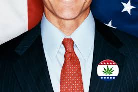 the new politics of pot the 2014 candidates who want to legalize it