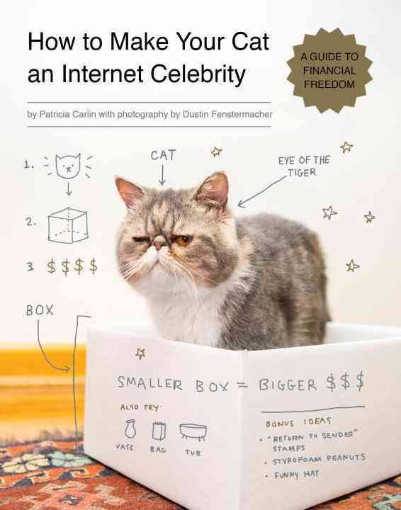 "Résultat de recherche d'images pour ""how to make your cat an internet celebrity"""