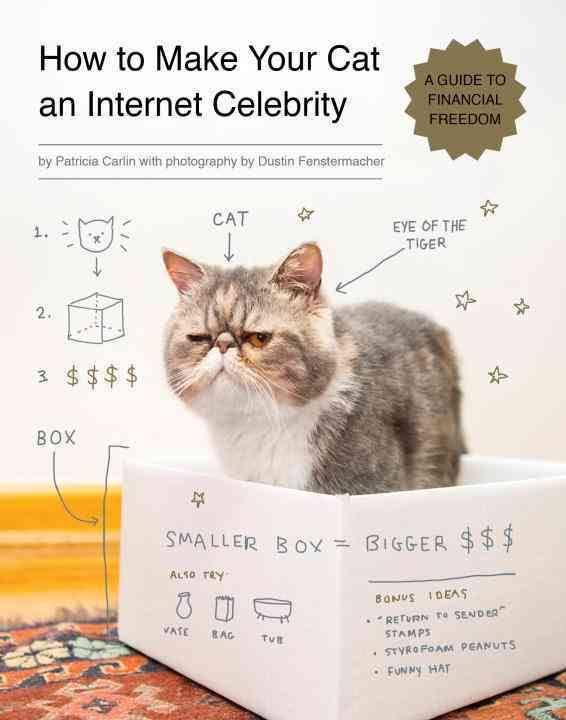 """Résultat de recherche d'images pour """"how to make your cat an internet celebrity"""""""