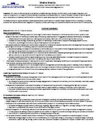 Corporate Travel Consultant Resume Sample Travel Consultant Resume     Best Resumes Business Best Consultant Resumes Consultant Resume Format Kickstart Your Career Business Executive Sample Resume