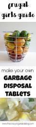 How To Get Rid Of Kitchen Sink Odor Best 20 Garbage Disposal Smell Ideas On Pinterest Garbage