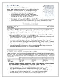 Professional Resume Package BrightSide Resumes in A Professional Resume ariananovin co
