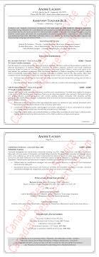 Aaaaeroincus Terrific Elementary School Teacher Resume Example