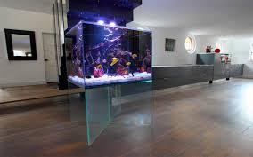 in wall fish tanks aquarium fish tank filter mounted fish bow