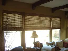 tinted window blinds salluma