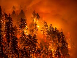 Wild Fires In Oregon Update by Wildfire Season 2017 2 Million Acres Are Burning Across The Us