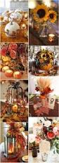 best 20 fall pumpkin wedding ideas on pinterest pumpkin wedding