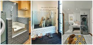 pet friendly home renovation trends eieihome
