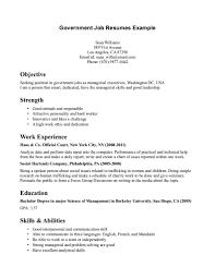 Basic Resume Examples Skills Government Job Resumes Example Image Simple Resume Examples For