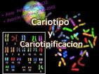 Cariotipo y cariotipificacion