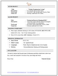Logistics manager CV template  example  job description  supply     Executive Resume BrightSide Resumes