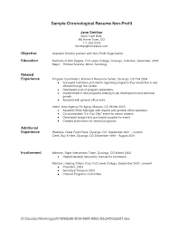 Example Resume  Nice Resume Objective For First Job With Personal Summary And Experience For Software     happytom co