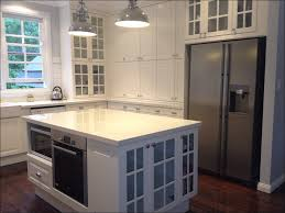 Reviews Of Ikea Kitchen Cabinets Kitchen Cheap Kitchen Cabinets House Additions Ikea Kitchen