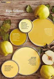 Behr Home Decorators Collection Paint Colors by 25 Best Yellow Paint Colors Ideas On Pinterest Yellow Kitchen