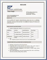 The Best Resume In The World by Free Professional Resume Template Downloads Chronological Resume