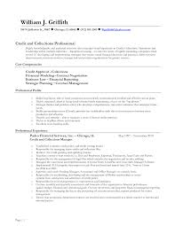 Management Consultant Resume Sample by Salesforce Consultant Resume Resume For Your Job Application