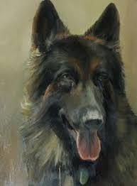 belgian sheepdog crossword clue pam southall pamsouthall7 on pinterest