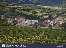 small german village with a church surrounded by vineyards v