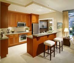 kitchen luxury kitchen ceiling design ideas appealing kitchen