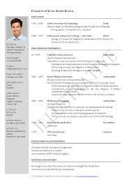 Aaaaeroincus Ravishing Free Resume Samples Amp Writing Guides For     Dimpack com career change objective statement career change resume examples       career summary