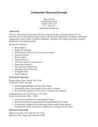 Airline passenger service agent cover letter