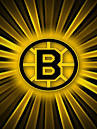 Boston BRUINS Logo Wallpaper | iPhone | Blackberry