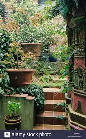 zandra rhodes small private town garden london steps up sloping