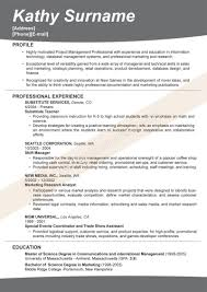 what is the best resume format salesman objectives resume shoe sales resume objective retail good resume what is a good modern cv format good resume samples resume objective