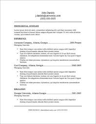Information Technology Resume Examples Dotorial com example information technology program manager resume sample