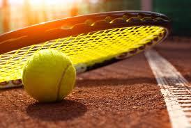 sports persuasive essay topics sports essay topics Sports Science Essay Topics   Essay Topics   Argumentative Essay