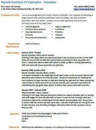 Payroll Assistant CV Example Resume