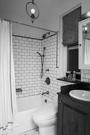 Bathroom Vanities Ideas Colors 100 Bathroom Setup Ideas Double Bathroom Vanities Ideas