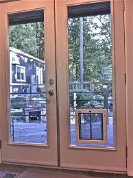 catflap in glass door pet doors the problem and the solution dog door for sliding