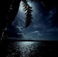 عذرا ايها الليل افهمك images?q=tbn:ANd9GcR