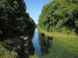 Marne–Rhine Canal