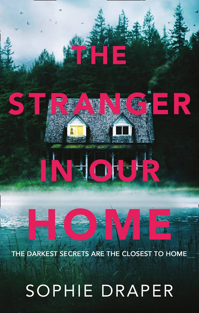 Image result for the stranger in our home sophie draper